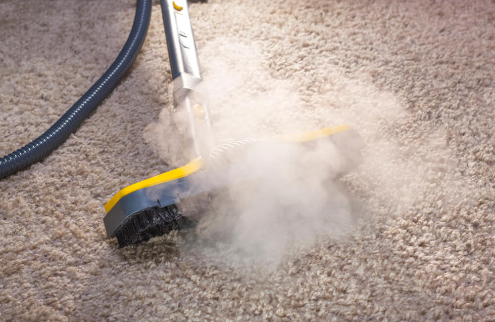 sanitize the carpet