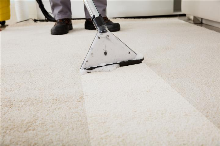 Methods to sanitize the carpet